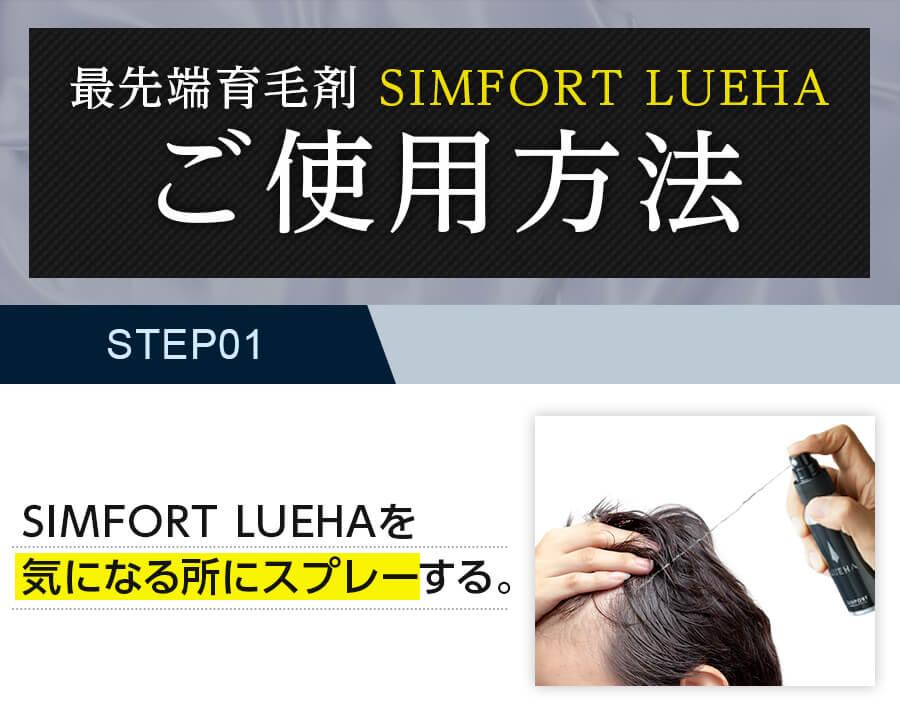 SIMFORT LUEHA(ルエハ)の使い方1